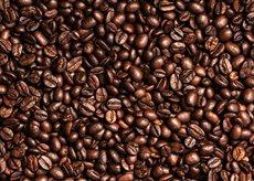 Espresso Master coffee beans